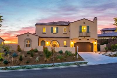 Carlsbad Single Family Home For Sale: 7509 Camino Minero