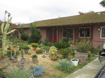 Solana Beach Single Family Home For Sale: 525 S Nardo Ave.