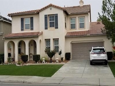 Menifee Single Family Home For Sale: 29178 Jamesonite Cir