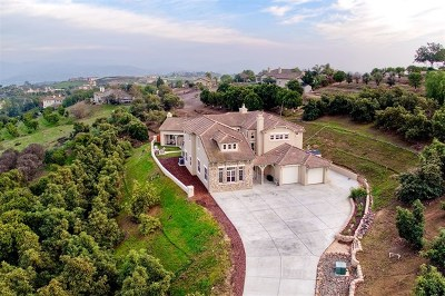Fallbrook Single Family Home For Sale: 5006 Hill Ranch Dr