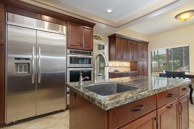 Escondido Single Family Home For Sale: 1170 Dexter Place