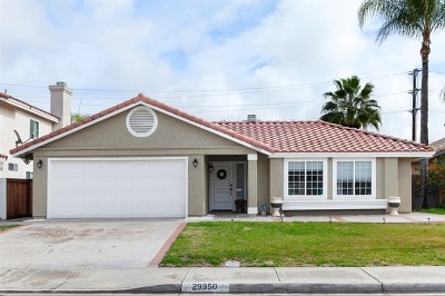 Menifee Single Family Home For Sale: 29950 Calle San Martine