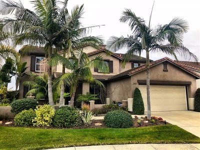Oceanside Single Family Home For Sale: 3427 Soyla Dr