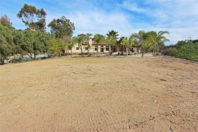 Escondido Single Family Home For Sale: 1678 Country Club Dr