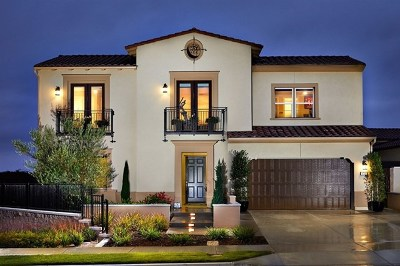Carlsbad Single Family Home For Sale: 4713 Kentner Ct