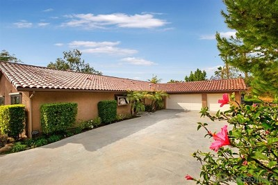 Spring Valley Single Family Home For Sale: 4157 Conrad Drive