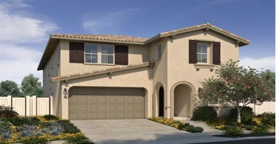San Marcos Single Family Home For Sale: 216 Treasure Drive