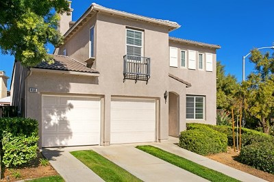 San Marcos Single Family Home For Sale: 458 Camino Verde