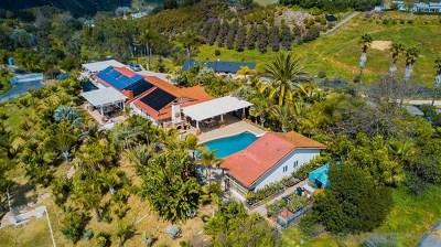 Fallbrook Single Family Home For Sale: 40225 Sandia Creek Dr