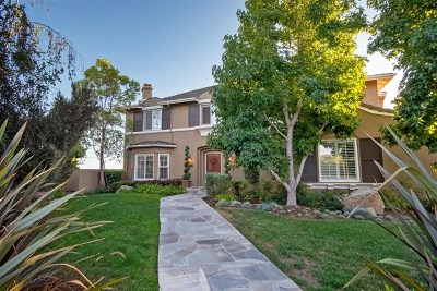 Carlsbad Single Family Home For Sale: 3529 Corte Dulce