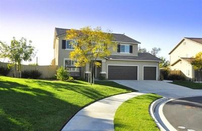 Vista Single Family Home For Sale: 1217 Stratton Dr