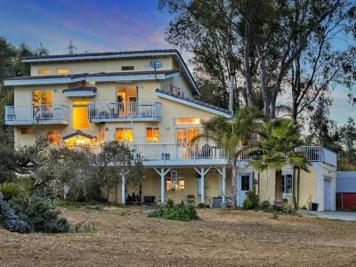 Escondido Single Family Home For Sale: 9237 Harmony Grove