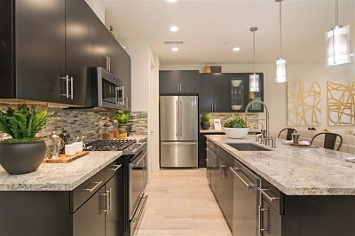 Chula Vista Single Family Home For Sale: 1783 Santa Ivy Ave