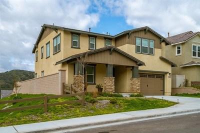 Fallbrook Single Family Home For Sale: 35732 Garrano Ln