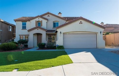 Oceanside Single Family Home For Sale: 3173 Toopal Drive