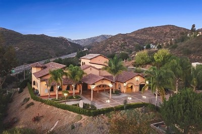 Poway Single Family Home For Sale: 14545 Highway 67 E