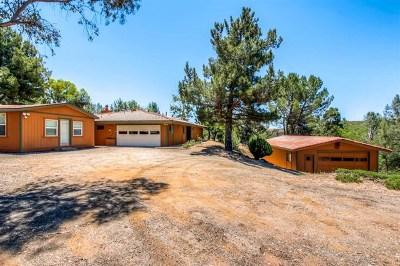 Alpine Single Family Home For Sale: 24353 Wildwood Glen Ln