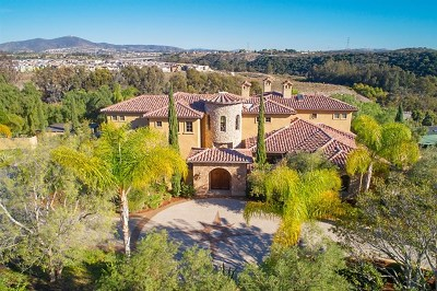San Diego Single Family Home For Sale: 13425 Caminito Mendiola