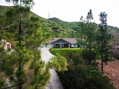 El Cajon Single Family Home For Sale: 1032 Sycuan Summit