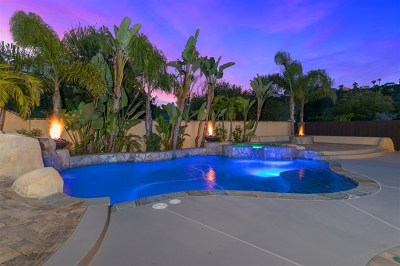 Carlsbad Single Family Home For Sale: 2458 Mica Rd