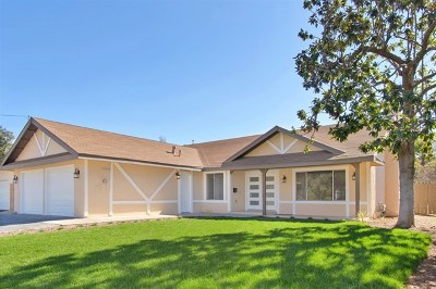 Escondido Single Family Home For Sale: 1042 Chestnut St