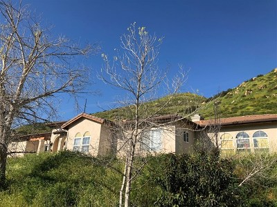 El Cajon Single Family Home For Sale: 3594 Dehesa Meadow Road
