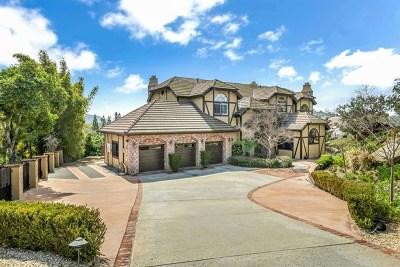 El Cajon Single Family Home For Sale: 1363 Merritt Dr