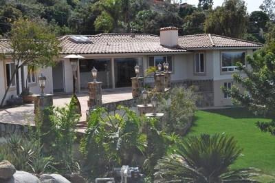 La Mesa Single Family Home For Sale: 9950 Grosalia Ave