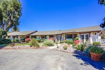 Escondido Single Family Home For Sale: 11488 Alps Way