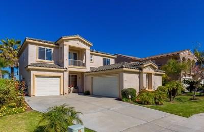 Chula Vista Single Family Home For Sale: 993 Via Sinuoso