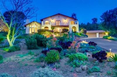 San Marcos Single Family Home For Sale: 598 Camino De La Cima