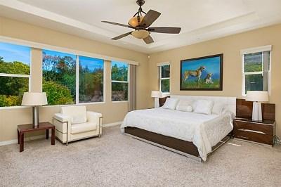 San Marcos Single Family Home For Sale: 1636 Brighton Glen Rd