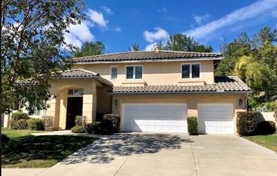 Escondido Single Family Home For Sale: 334 Camino Bailen