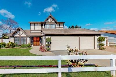 Oceanside Single Family Home For Sale: 1607 Hackamore Rd