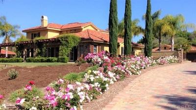 Fallbrook Single Family Home For Sale: 2 Saddle Creek Road
