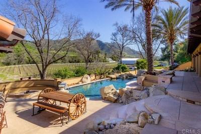 Fallbrook Single Family Home For Sale: 40689 De Luz Murrieta Rd