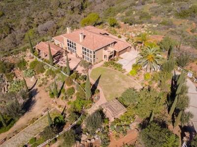 Escondido Single Family Home For Sale: 4224 Canyon De Oro