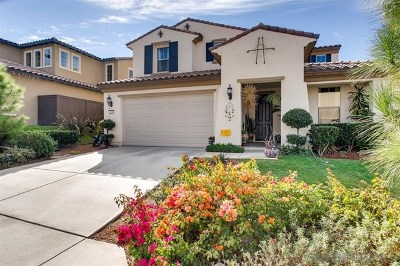 Vista Single Family Home For Sale: 1526 Avila Ln