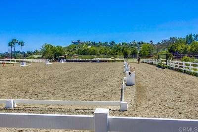 Alpine, Carmel Valley, Del Mar, Encinitas, Escondido, Rancho Santa Fe, San Diego Single Family Home For Sale: 1084 Double Ll Ranch Road