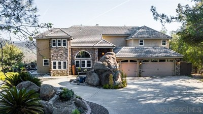 Alpine Single Family Home For Sale: 2845 Firebrand Dr.