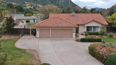 Alpine Single Family Home For Sale: 8848 Bridle Run