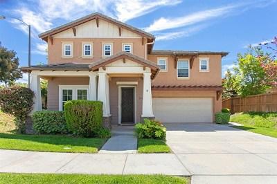 Carlsbad Single Family Home For Sale: 3500 Rock Ridge Rd