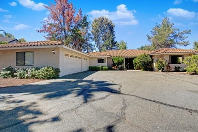 Vista Single Family Home For Sale: 1120 Warmlands Ave