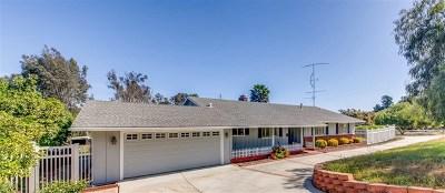Fallbrook Single Family Home For Sale: 509 Verde Avenue