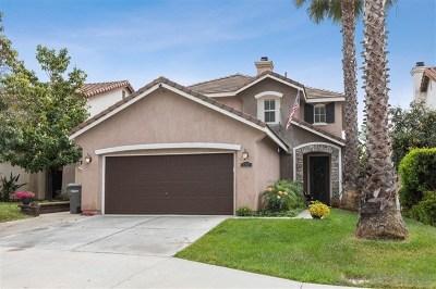 San Marcos Single Family Home For Sale: 1337 Avenida Pantera
