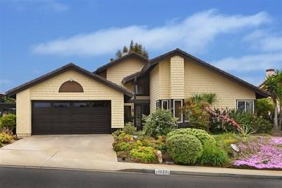 Solana Beach Single Family Home For Sale: 1027 Via Mil Cumbres