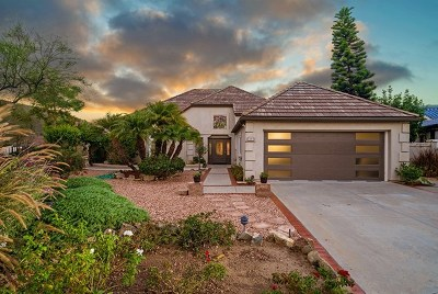 San Marcos Single Family Home For Sale: 1305 Miracielo Ct