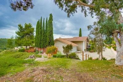 Bonita Single Family Home For Sale: 382 Camino Elevado