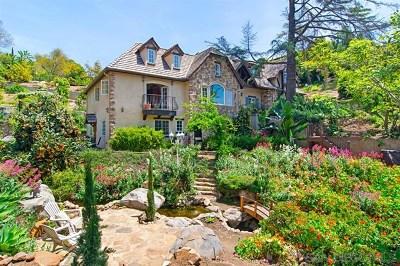 La Mesa Single Family Home For Sale: 4616 Conrad Drive
