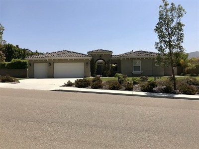 Chula Vista Single Family Home For Sale: 619 Via Maggiore
